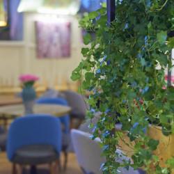 Ресторан №642